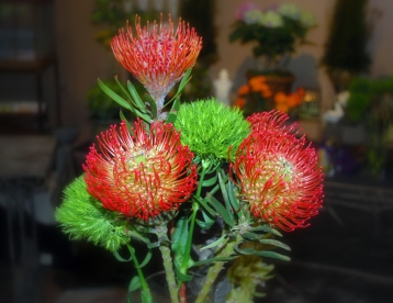 Edwards Florist of Northbrook